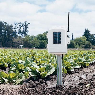 Station de température et humidité au sol